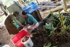 guyana-december-2011-037-2