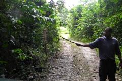 guyana-agust-2011-177
