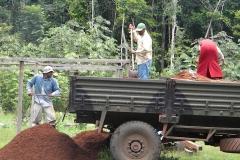 guyana-agust-2011-184
