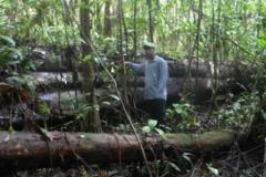 guyana-agust-2011-270