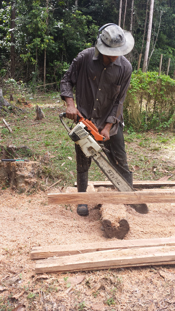 Cutting with the Chainsaw